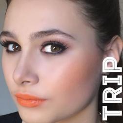 trip-model
